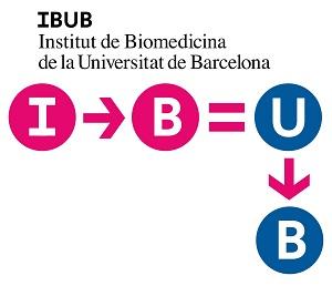 logo IBUB